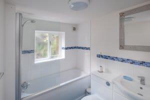 Annex downstairs bathroom