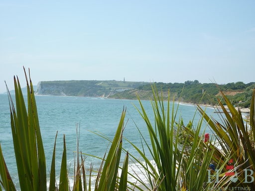 British Summer time is only 5 weeks away!!! Lets head to the Isle of Wight!!!